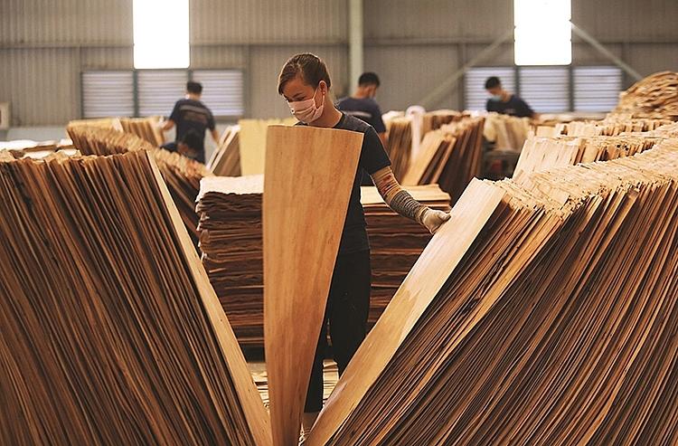 """""""Lá chắn"""" bảo vệ ngành gỗ"""