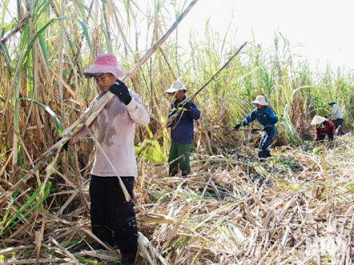 Bộ Công Thương điều chỉnh hình thức tổ chức tham vấn trong vụ việc điều tra chống bán phá giá và chống trợ cấp đối với sản phẩm đường mía có xuất xứ từ Vương quốc Thái Lan (mã số vụ việc: AD13-AS01)