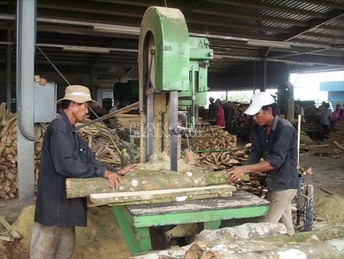 Máy xẻ gỗ VN MÁY CƯA XẺ GỖ VÒNG ĐỨNG (LOẠI KHÔNG CÓ ĐƯỜNG RAY)