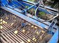 Máy thu hoạch VN Khoai tây